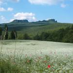 panoramica-CEA-Sasso-Simone
